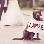Doen, een tekstbord op je bruiloft